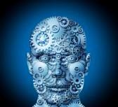 complejidad humana