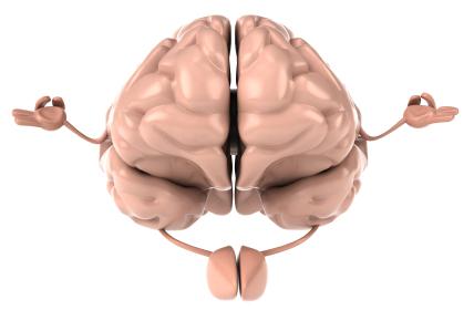 Efectos de la meditación mindfulness sobre el cerebro. (1/6)